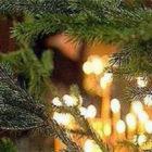 Рождество Христово после длинного поста. Свобода от греха